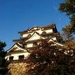 彦根と名古屋と京都。…