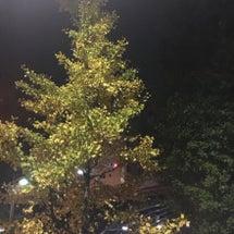 秋と言えばTokyo…