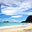 Hawaiian W…