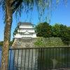 名古屋城☆Nagoya Castle☆☆☆☆の画像
