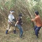 竹藪に密生する野菜達の記事より