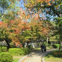 秋のお出掛け。大阪城…