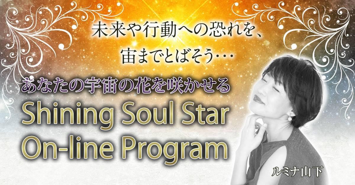 ShiningSoulStar Program