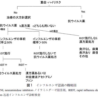 自称EBMをバリバリ学んだ岩田健太郎氏のエビデンスに基づかないタミフルと漢方のイの記事に添付されている画像
