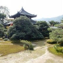鹿王院のお庭