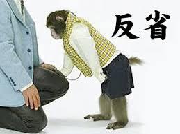 「反省 サル」の画像検索結果
