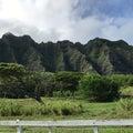 【ハワイ旅行記Ⅲ㊾】チャンスの神様への行き方!神様に会いに行ったらすごいことが起きちゃった話。