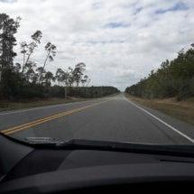 アメリカの国立森林公…