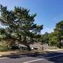 松江城を望む現場から