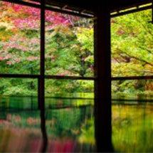 瑠璃光院・京都の紅葉…