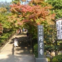 北鎌倉散歩ぱーと1(…