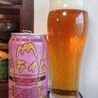 伊豆の国ビール クラ…