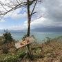 ☆琵琶湖の島の【ⅾの…