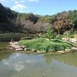 土日は庭園観光(^o…