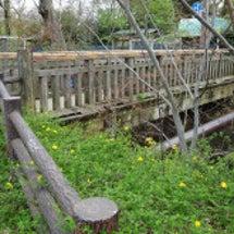 玉川上水・小松橋の廃…