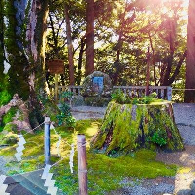 ご縁を守り、絆を括る菊理媛。白山比咩神社/神奈木流 体バランス法の記事に添付されている画像