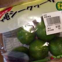 日本列島の長さを感じ…