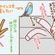 【漫画】オカメインコ兄弟