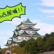 ☆あきぱん名古屋うさ…