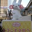 立川:昭和記念公園に…