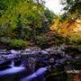 愛知県の隠れたいい景…