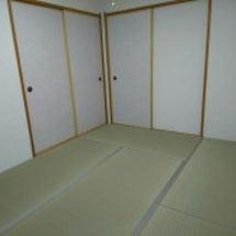 カラー畳での畳替~床…