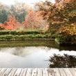 篠脇山荘ヨーガは自然…