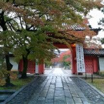 真如堂、雨の中の紅葉