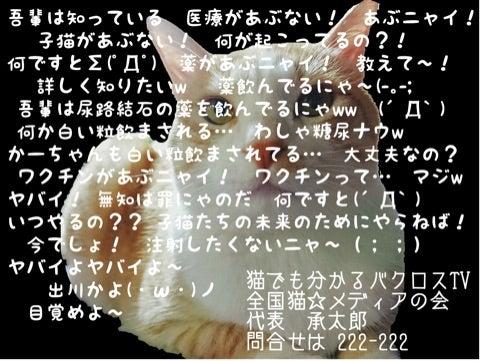 {C6A4DEB9-614B-45D7-BB1B-B20C8B9F568D}