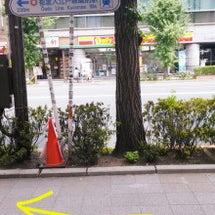 ぷちろみ♡お店への行…