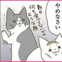猫肥ゆる冬(web掲…