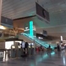羽田空港 国際線に野…