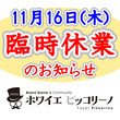 【11/16(木)】…