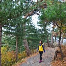 韓国3大寺、通度寺へ…
