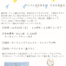 11/25 ハーブエ…