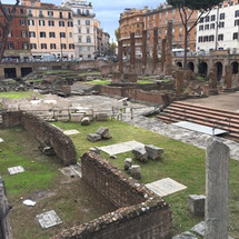 ローマの遺跡とネコち…