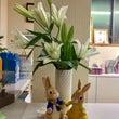 お教室はいつも、お花…