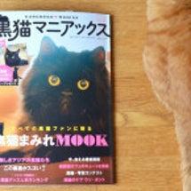 黒猫マニアックス2に…