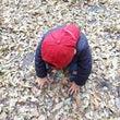 子どもの「心と脳の栄…