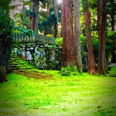 苔のむす緑の癒し平泉寺白山神社/神奈木流 体バランス法の記事に添付されている画像