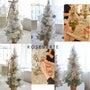 今年のクリスマスレッ…