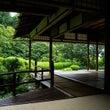京都で紅葉を見よう@…