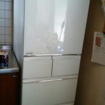来たぜ、冷蔵庫
