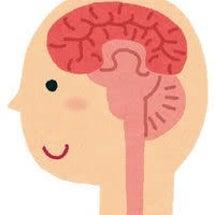 脳は糖と酸素で生きて…