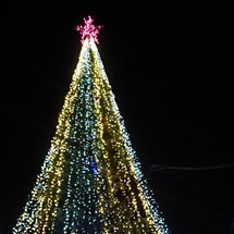 東逗子クリスマスツリ…