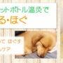 【NEW】『愛犬と一…