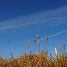 今朝の素晴らしい雲『…
