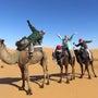 夢の国「モロッコに住…