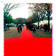 red carpet…