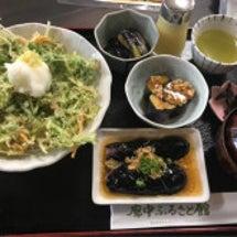 藤田先生と高知名物丼